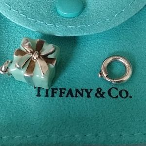 💙Tiffany & Co Present Charm